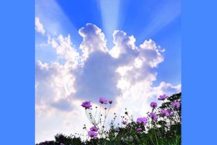 天使のはしご画像